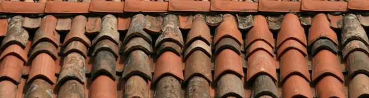 atap rumah genteng tanah liat yang berjamur