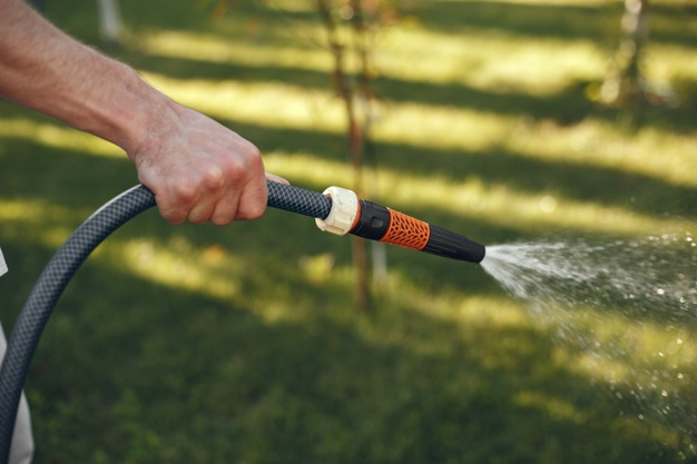 cara menghemat air mengurangi siraman menyiram tanaman